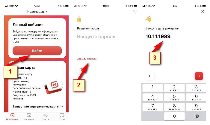 Восстановление пароля через приложение